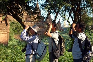 Bagan Temples and Nature Day Trip...