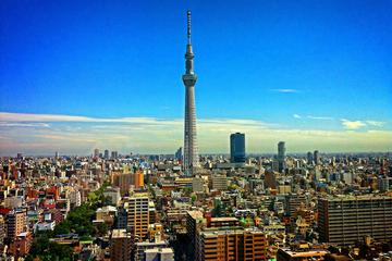 Tokyo Airport (HND) - Private Transfer