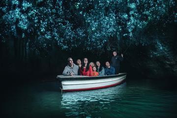 Waitomo Glowworm Caves Guided Tour