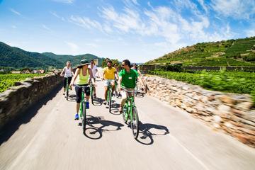 Cykelturer med vinprovning avgår från Vienna