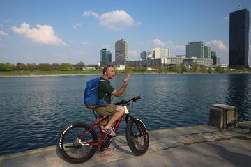 Halvdags miljøvenlig cykelrundtur E-Fatbike i Wien for små grupper