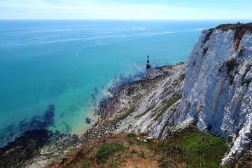 Full Day Small-Group White Cliffs of ...