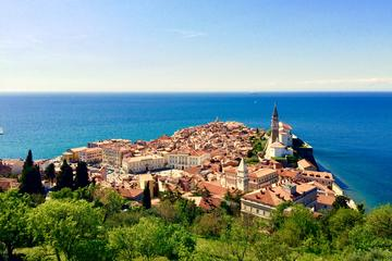 Piran Walking Tour with Local Wine...