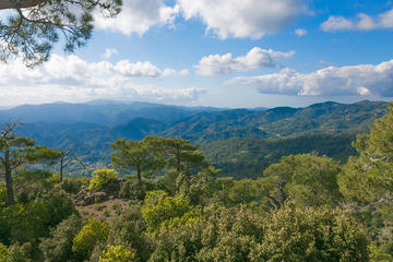 Full Day Jeep Safari to Troodos Mountains and Kykkos Monastery from Paphos