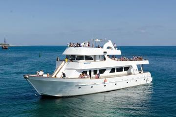 Sea Star Full Day Cruise from Limassol