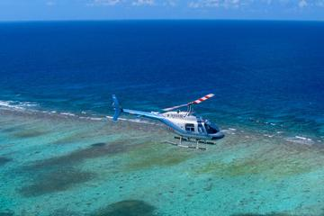 Recorrido en helicóptero por la...