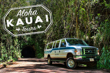 Rainforest 4x4 Van Tour and Hiking Adventure