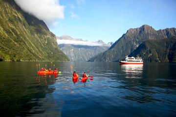 Croisière sur le Milford Sound avec tour en kayak optionnel