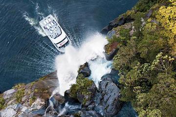Crucero para conocer la naturaleza de...