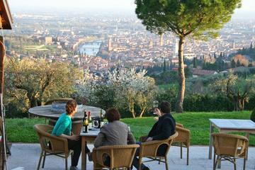 2-Hour Wine Tasting Session in Verona Hills