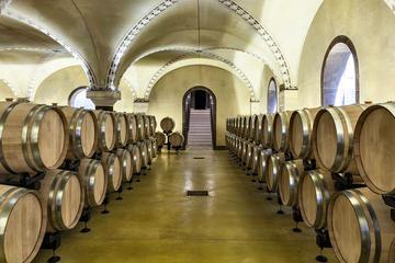 Amarone Wine tasting in Verona at Tenute Salvaterra