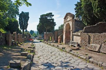 Archeological Site of Pompeii: guided tour for small groups