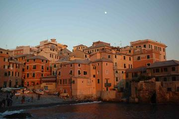 Genoa and its music tradition in a private guided tour