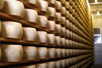 Parmigiano Reggiano: Tour and Tasting from Verona