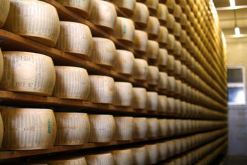 Parmigiano Reggiano: Unique Tour and Tasting from Verona