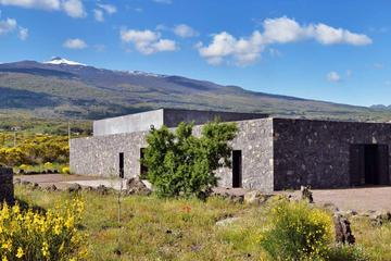 Private Wine Tour and Tasting at the foot of Etna Volcano