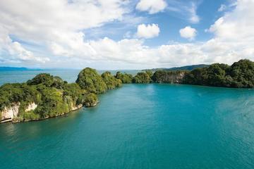 Full-day Los haitises national Park and natural Spa