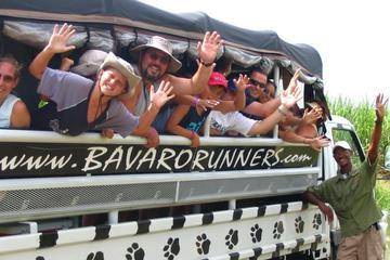 Rum Runners Safari
