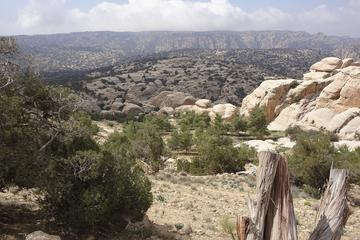 Private Tour: Dana Nature Reserve Hike and Dead Sea with lunch