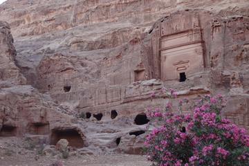 Private Tour Petra and Shobak Castle...