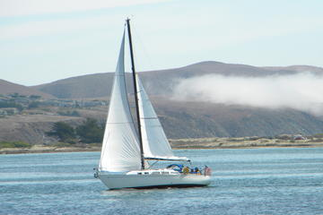 3 Hour Sailing on Bodega Bay