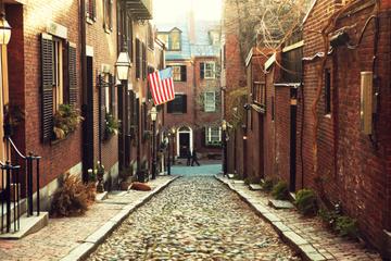 Boston Super Economique : tour à Cambridge, Lexington et Concord plus...