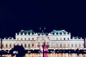 Recorrido navideño en Viena, incluido...