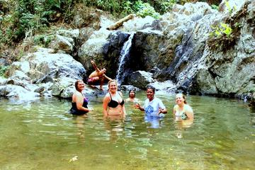 Full-Day Health and Therapeutic Sabeto Valley Tour