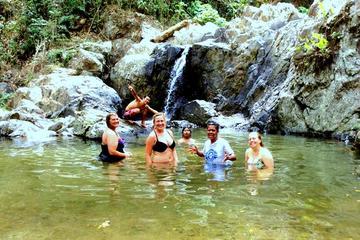 Sabeto Valley Waterfall, Garden of...
