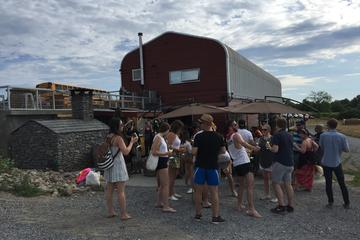 Full-Day Prince Edward County Wine Tour with Lunch and Optional Beach...