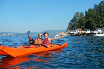 3- Hour Kayak Tour on the Oslofjord