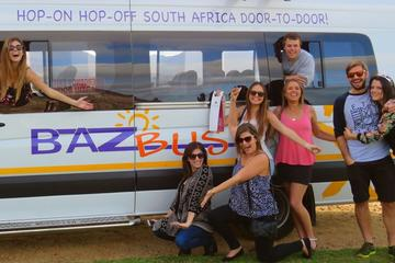 One-Way Hop-on Hop-off Bus from Durban to Cape Town