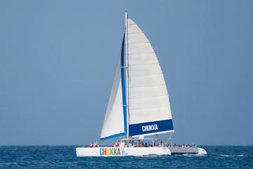 Croisière en catamaran en Jamaïque vers les chutes du fleuve Dunn au...