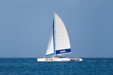 Cruzeiro de Catamarã da Jamaica para as Cataratas do Rio Dunn em Ocho...
