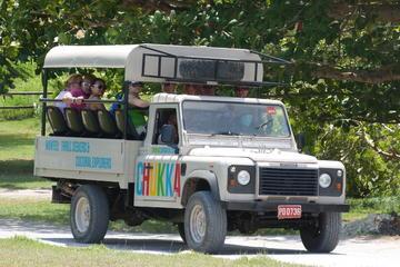 Excursión de aventura en jeep desde Montego Bay