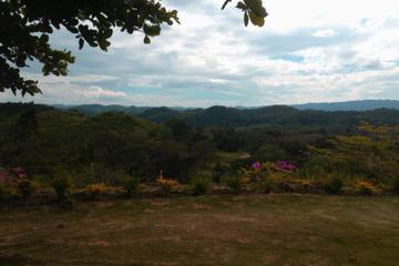 Good Hope Estate Adventure from Montego Bay or Ocho Rios