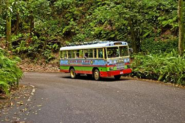 Ocho Rios Zion Bus Tour