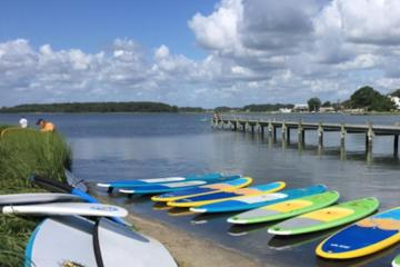 Day Trip 2-Hour Paddleboard Rental in Rehoboth Bay near Dewey Beach, Delaware