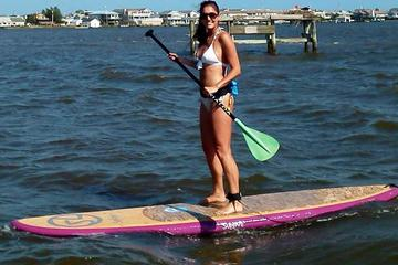 Day Trip Guided Paddleboard Excursion on Rehoboth Bay near Rehoboth Beach, Delaware