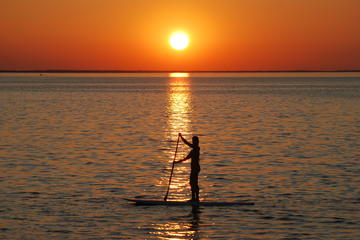 Sunset Dolphin Paddleboard Excursion on Delaware Bay