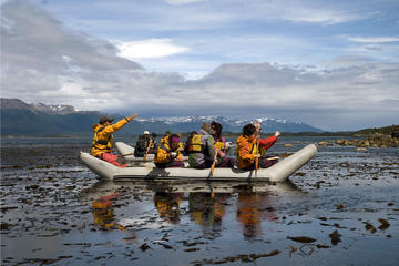 Full-Day Gable Island Eco-Adventure at the Beagle Channel