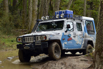 Lakes District 4x4 Full-Day Tour with Lunch from Ushuaia