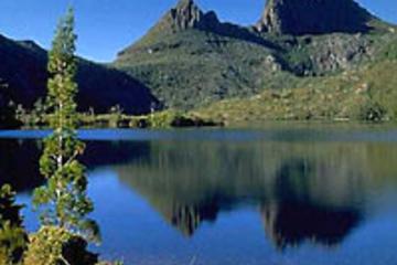 Excursão de um dia pelo Parque Nacional Cradle Mountain saindo de...