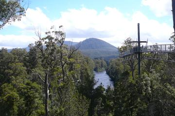 Huon Valley and Tahune Forest Airwalk...