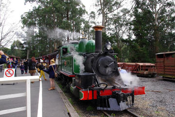 Puffing Billy Train With Optional...