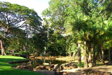 Tour de Darwin l'après-midi