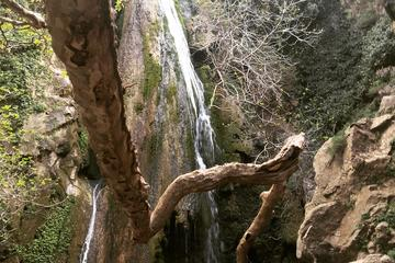 Herbs Olives and Waterfall Adventure Tour - 4x4 Excursion with Land...