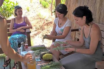 Workshop on a Herbal Farm - 4x4...