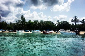 VIP Saona Island Tour