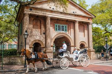 Private Carriage Tour of Historic...